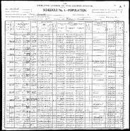 1900 census Curlhair 3