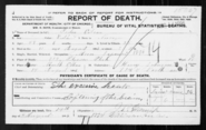 Olson-Peder 1896 death