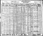 1930 census Skinner-Algernon