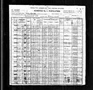 1900 census Curlhair
