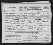 William Edward Glatt Jr birth cert