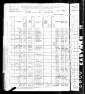 1880 census Olsen Jansdatter Chicago