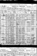 1900 census O'Malley Reynolds