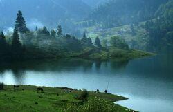 Cobilița Lake, Bistrița-Năsăud.jpg