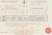 Mary Ann Finn (1858-1885) birth certificate