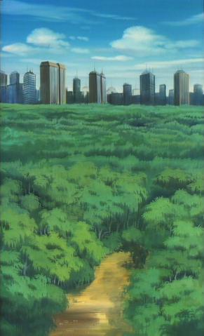 File:CityLandscapeinIAmtheCityepisodeCollage.png