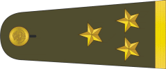 File:Mexican Military Coronel.png