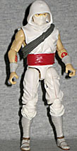 Storm Shadow Resolute 2010