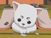 Sadaharu undertable