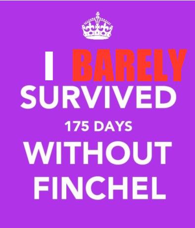 File:Finchel23.png