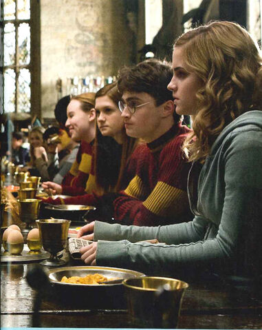File:Harry-ginny-hermione-quidditch - copia.jpg