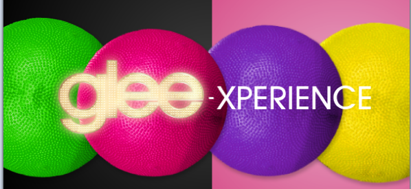 File:Gleexperience.png