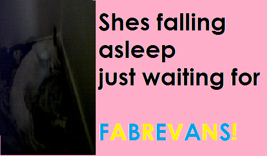 File:MY DOGS FALLING ASLEEP WAITING FOR FABREVANS!.png