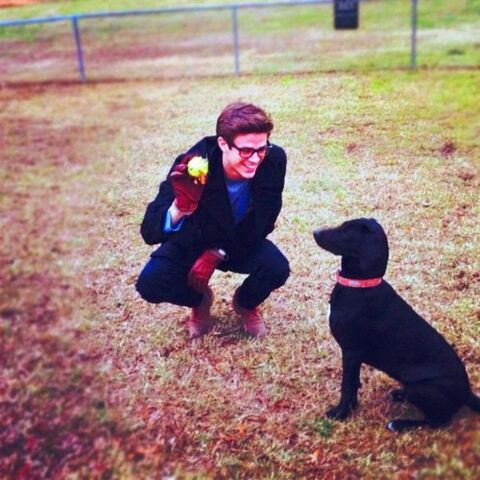 File:Grant gustin and dog.jpg