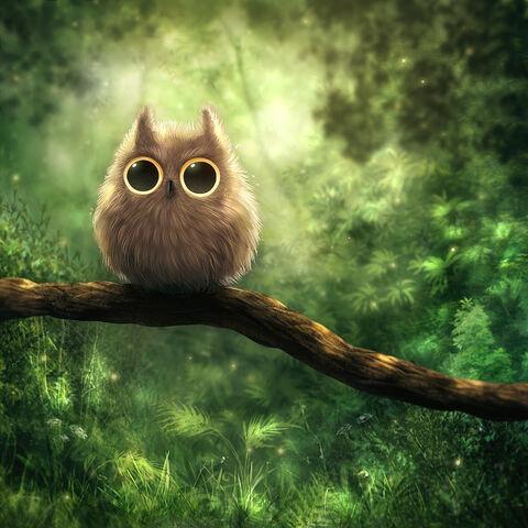 File:Owl by kikariz-d2zosgx.jpg