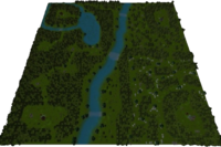 Magic Forest Map