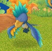 Craftybird