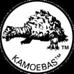 Monster Icons - Kamoebas