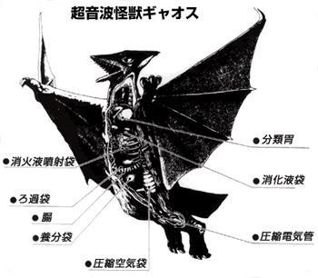 File:Gyaos Anatomical Drawing.jpg