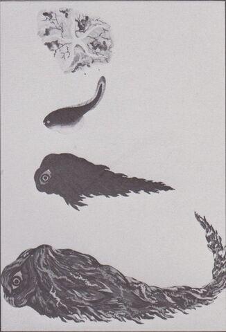 File:Hedorah Evolution Concept Art.jpg