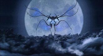 Iris Flying