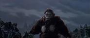 King Kong vs. Godzilla - 22 - KK