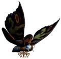 Unleashed - Mothra Imago