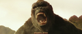 Kong Skull Island - Shutter TV Spot - 13