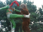File:Greenman kicking Shiraaji.jpg