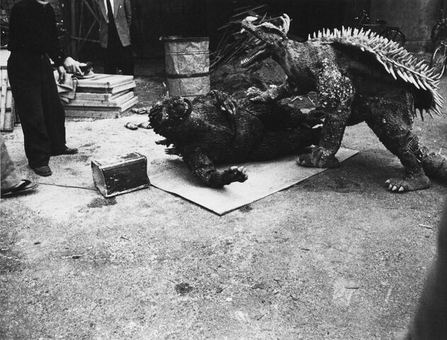 File:GRA - Godzilla is Down Before Anguirus.jpg
