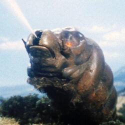 Godzilla.jp - 9 - SoshingekiMosuImago Mothra Larva 1968