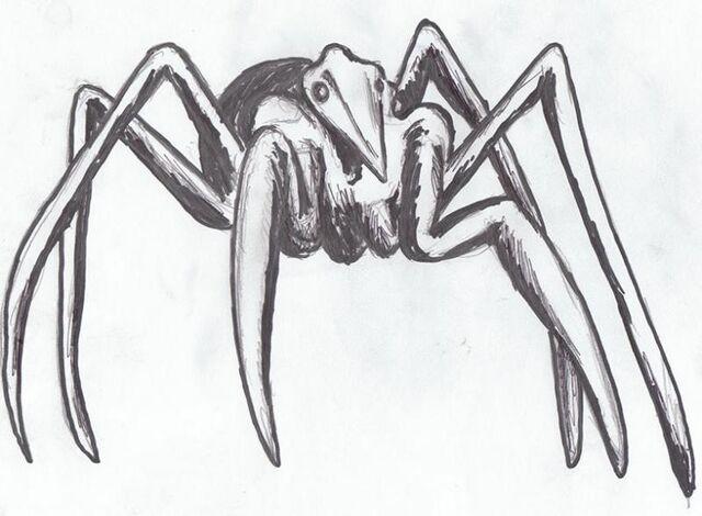 File:Spider creature 2 zps03c093b5.jpg