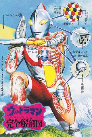 File:Ultraman anatomyimage.jpeg