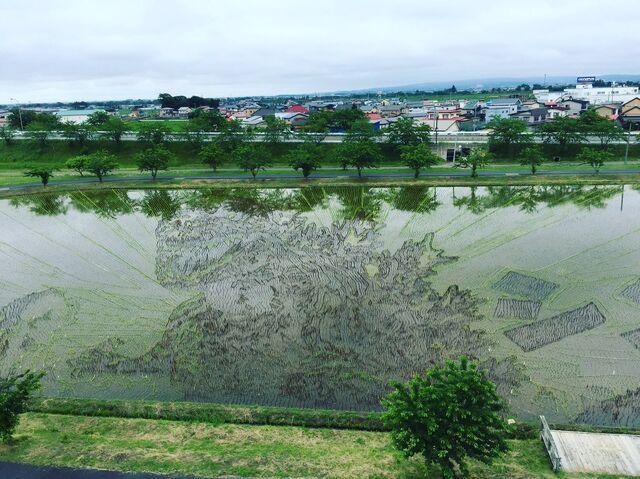 File:Shingoji pond.jpeg