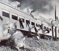 File:Nezura vs Train.jpg