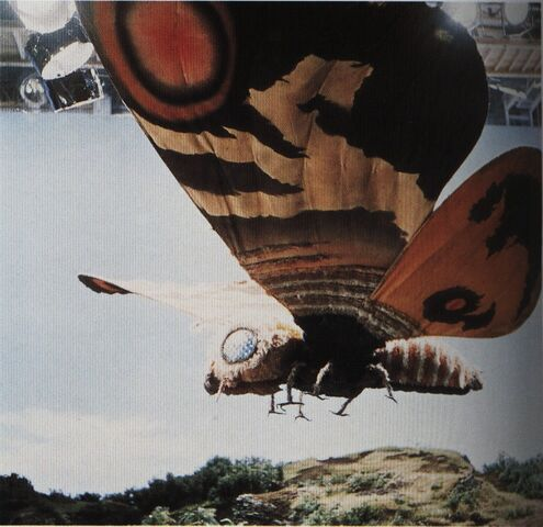 File:EHOTD - Mothra On Set.jpg