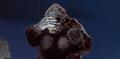 King Kong vs. Godzilla - 50 - King Kong Facepalm