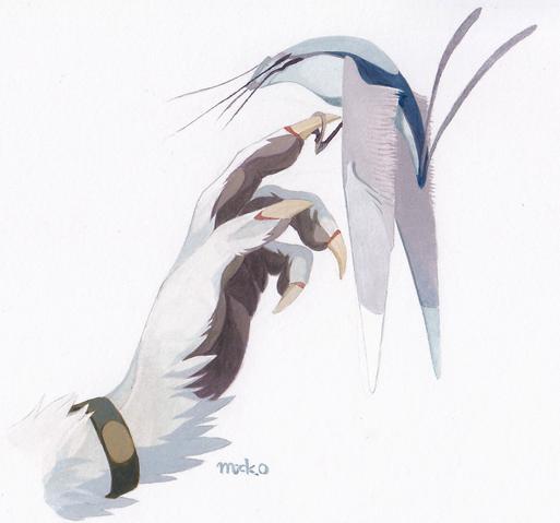 File:Tals bird.png