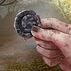 Braavosi Coin