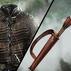 Arya and the Hound Armor Combo