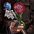 Daario's Flowers