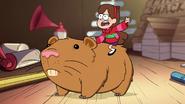 S1e11 Mabel riding hamster