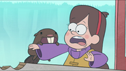 S1e2 beaver biting mabel