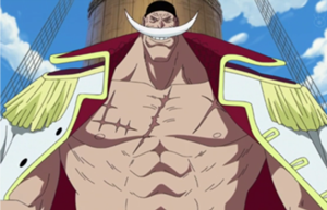 File:Whitebeard Profile.png