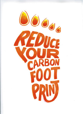 File:Reduce your carbon footprint.jpg