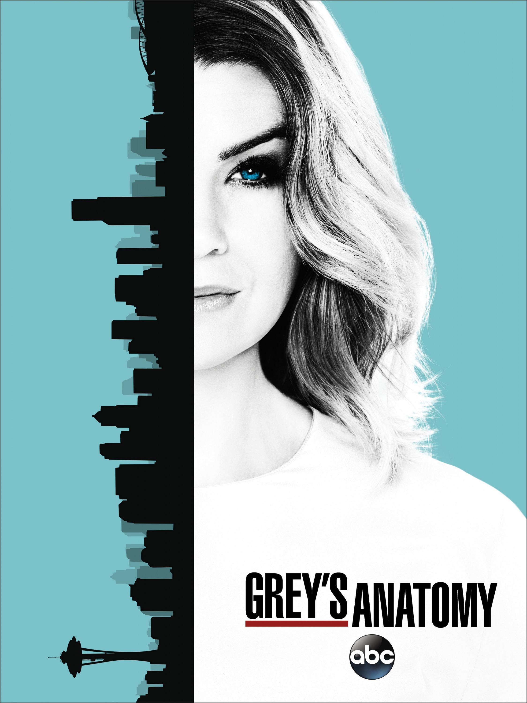 Grey's Anatomy Anatomía season temporada 13