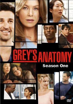 Greys-anatomy-season-1DVD