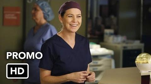 "Grey's Anatomy 11x11 Promo ""All I Could Do Was Cry"" (HD)"