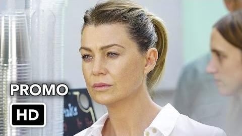 "Grey's Anatomy 13x05 Promo ""Both Sides Now"" (HD)"
