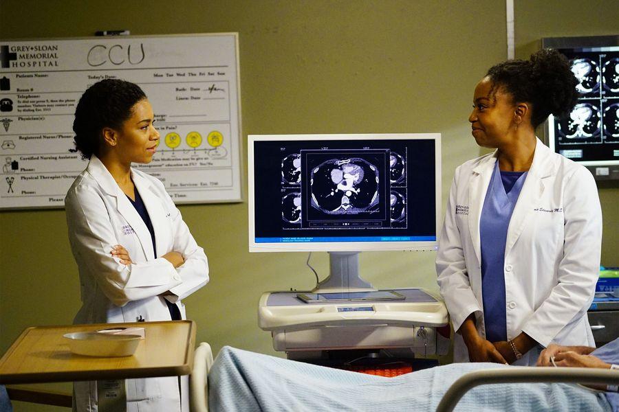 Grey's Anatomy Anatomía Grey 13x05